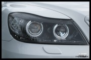 Skoda Octavia 2 FL Lampy Bi-Xenon Led Angel Eyes , Black